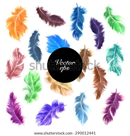 Vector decorative elements.  Watercolor hand drawn colorful bird feather set isolated on white. Romantic design. - stock vector