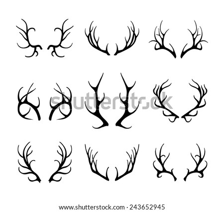 Vector deer antlers isolated on white. Set of different antlers large, branched and acute - stock vector