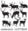 Vector deer silhouette - stock vector