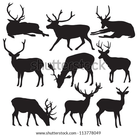 Stock Vector Deer Silhouettes as well Browning besides I0000H8jJ8QotgFc furthermore Mule deer silhouette clip art in addition Biggame. on buck deer clip art