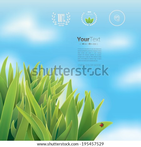 Vector design. Eco - green infographics page layout design with a sample graphics elements and a fresh leaves illustration in the corner - stock vector