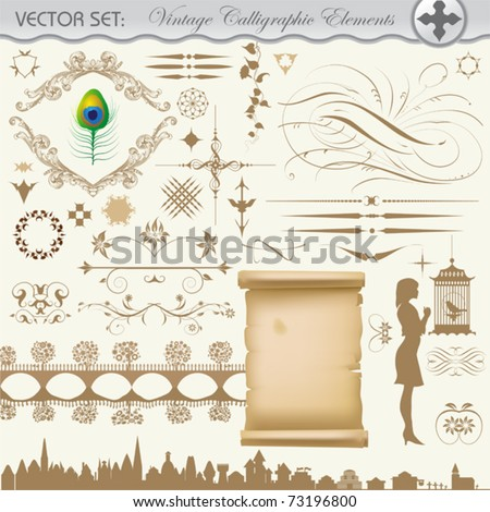 Vector design set. Decoration and vintage calligraphic elements. - stock vector