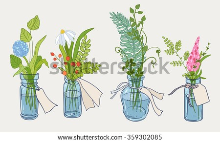 Vector design with hand drawn herbs and plants in small bottle. Decorative botanical set of four. - stock vector
