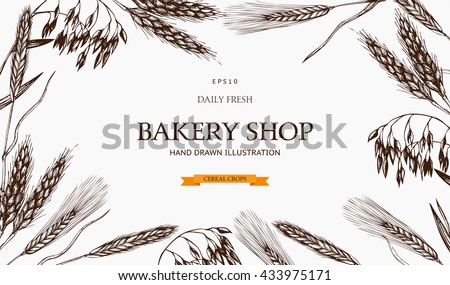Vector design with ink hand drawn cereal crops sketches for bakery or pastry shop. Vintage bakery illustration .  Farm fresh and organic plants template.