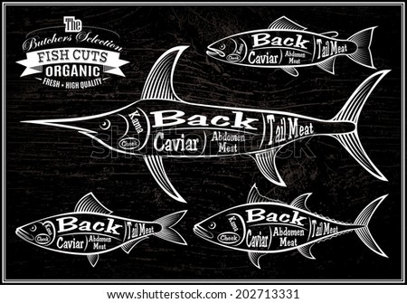 vector diagram cut carcasses salmon, swordfish, herring, tuna - stock vector