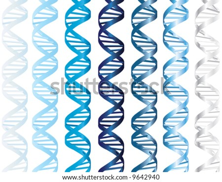 Vector - DNA double helix in several shades of matte and metallic blue, with the base pairs as shaded bars - stock vector