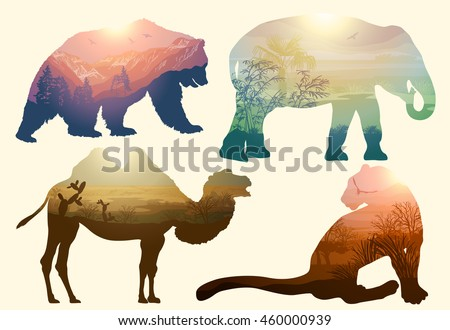 Vector Double exposure. Bear, elephant, camel and Leopard, wildlife concept