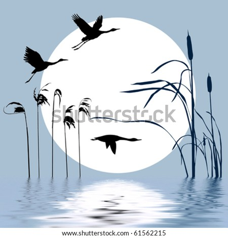 vector drawing flying birds on background sun - stock vector