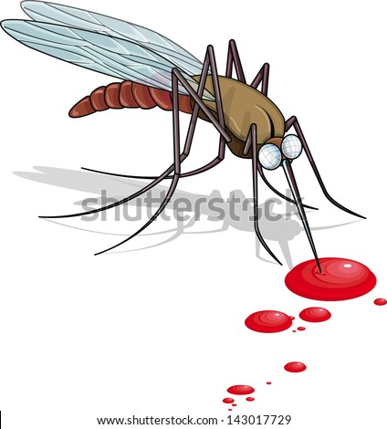 Vector drawing of a Mosquito/Mosquito/Easy to edit vector file, easy to edit groups, layers and objects easy to select and size - stock vector
