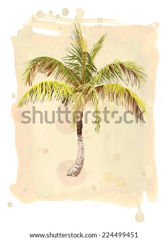 Vector drawing of a palm tree on watercolor background - stock vector