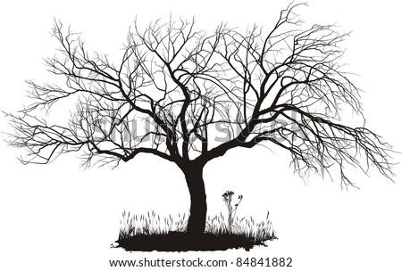 vector drawing of an old apple tree - stock vector
