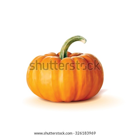 Vector drawing which shows a pumpkin on a white background.