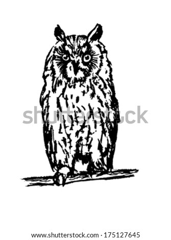 Vector eagle-owl black sketch on a white background.