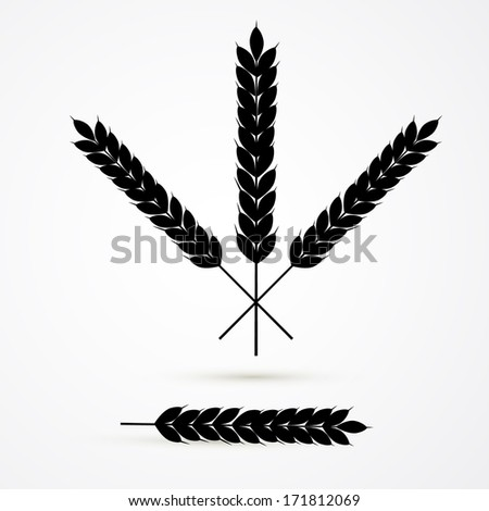 Vector Ears of Wheat Black Silhouette Isolated on White Background - stock vector