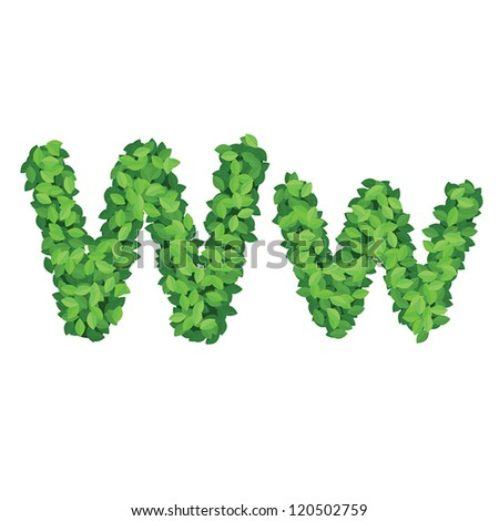 Vector eco alphabet letter W made from green leaves