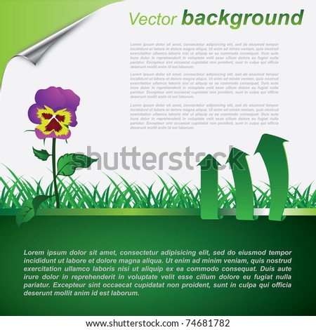 Vector eco background