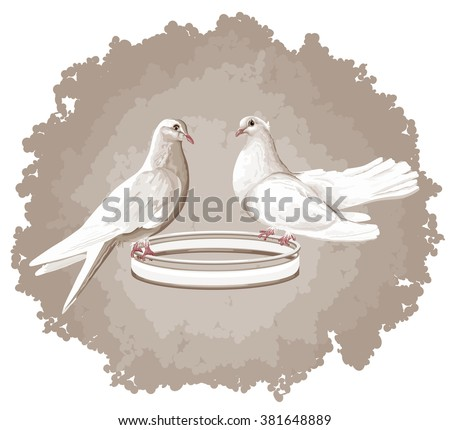 VECTOR eps 10. Two doves. Ready concept  as a symbol for peace in kind of white doves. Wedding birds on a ring. Vector Birds freedom concept or doves as a bird of love. Bird. DOVE. White dove on brown - stock vector