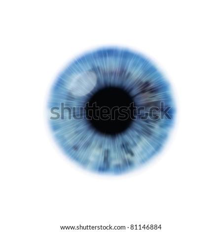 vector eye illustration - stock vector