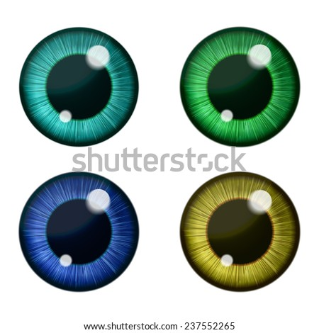 Vector eyes collection. Vector human pupil - stock vector