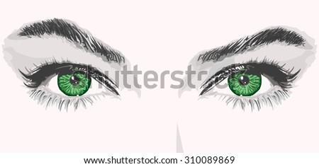 vector eyes lashes eyebrows outline illustration portrait - stock vector