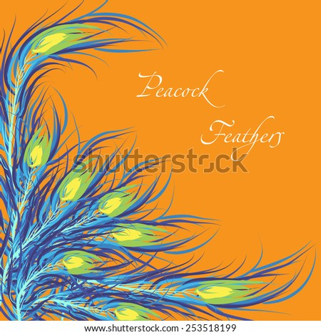 Vector feathers peacock with orange background. Fashionable design eps10. - stock vector