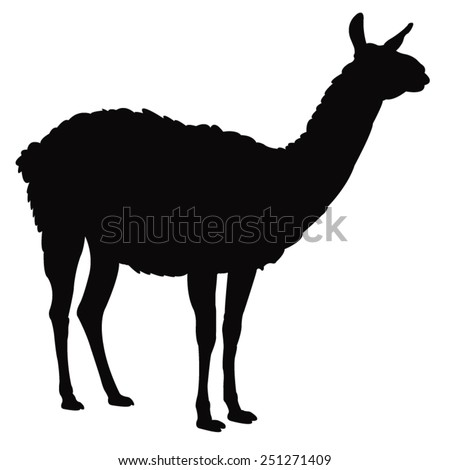 vector file of lama silhouette - stock vector