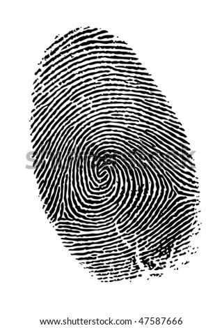 Vector fingerprint - stock vector