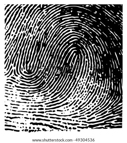 vector fingerprint - stock vector