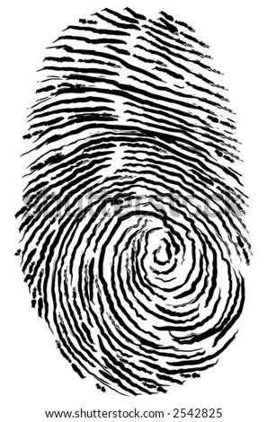 Vector fingerprint, created in Illustrator