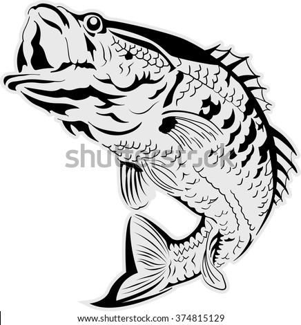 Vector fish illustration - stock vector