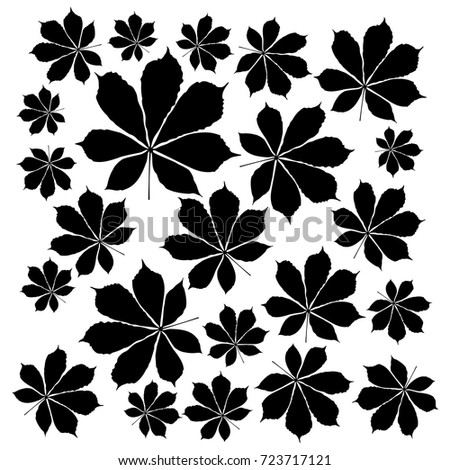 Vector flat illustration of black silhouette chestnut leaves. Element for design.