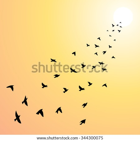 vector flock of flying birds towards bright sun - stock vector