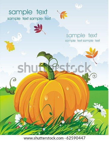 Vector Floral background with Place for your text. Abstract Classical autumn card with pumpkin and daisywheels.