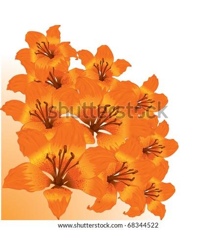 Vector floral border - stock vector