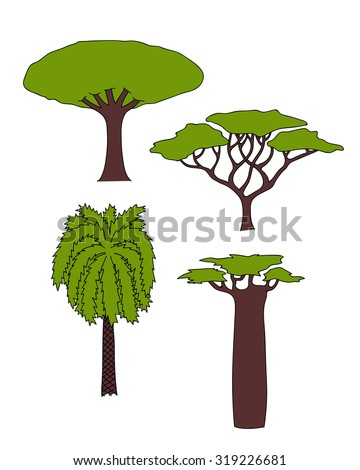 Vector floral hand drawn african trees - date palm, acacia, baobab tree, dragon tree. isolated digital nature sketch  - stock vector