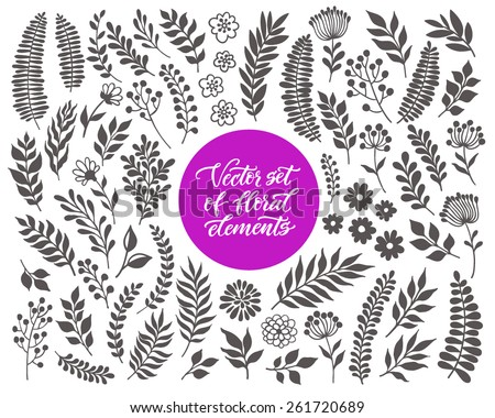 Vector floral set. Graphic collection with leaves and flowers, drawing elements. Spring or summer design for invitation, wedding or greeting cards - stock vector