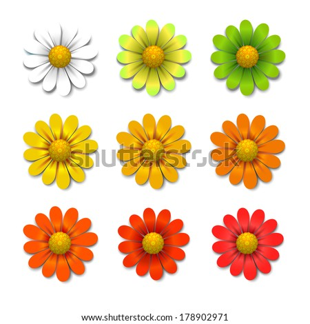 Vector flowers isolated on white background, design elements - stock vector