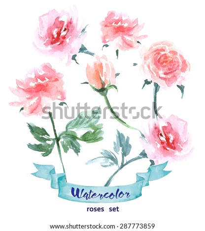 Vector flowers set. Colorful floral collection with  Watercolor roses. Spring or summer design for invitation, wedding or greeting cards. Vector illustration. - stock vector