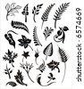 vector foliage set - stock vector