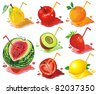 Vector Food Icons. Abstract web symbols. Juicy fruit concept. - stock vector