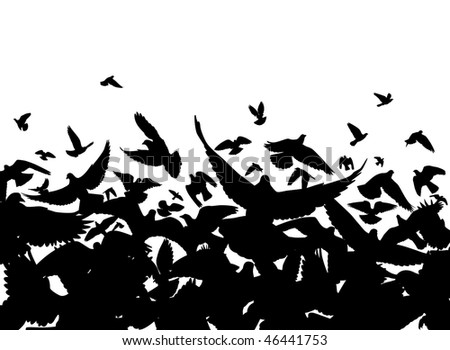 Vector foreground of a flock of pigeons with each bird as a separate object