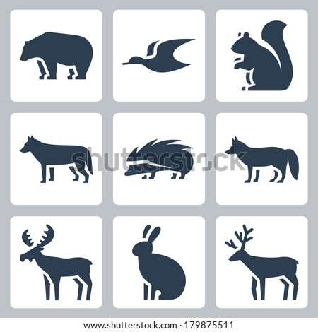 Vector forest animals icons set - stock vector
