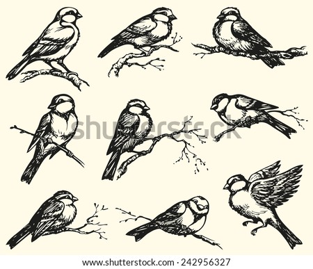 Vector Freehand Drawing Series Monochrome Sketches Stock Vector 242956327 - Shutterstock