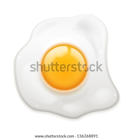 Vector Fried Egg isolated on white background