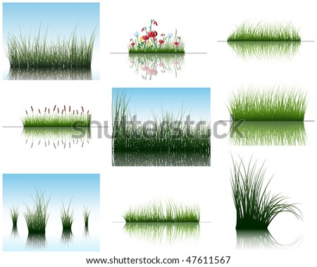 Vector grass silhouettes backgrounds set with reflection in water. All objects are separated. - stock vector