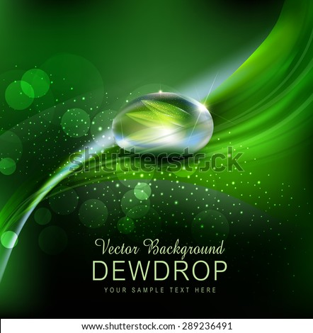 Vector green background with leaves and dew drops on the dark background - stock vector
