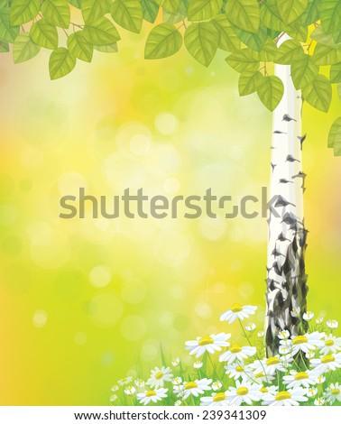 Vector green birch's leaves chamomiles on spring, bokeh background. - stock vector