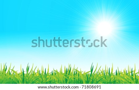 vector green grass and blue sky. Nature illustration - stock vector