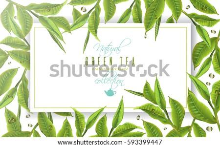 Nature S Design Green Tea