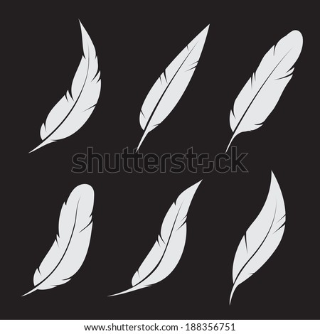 Vector group of feather on black background - stock vector